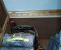 拖箱和拖包,全新 想换 全新双肩包