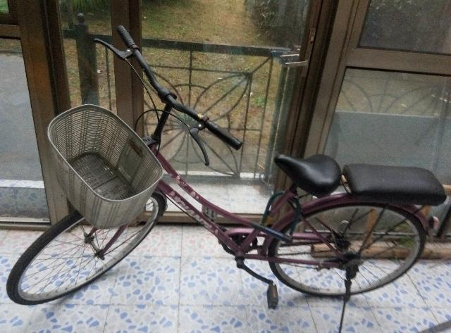 自行车/捷安特自行车
