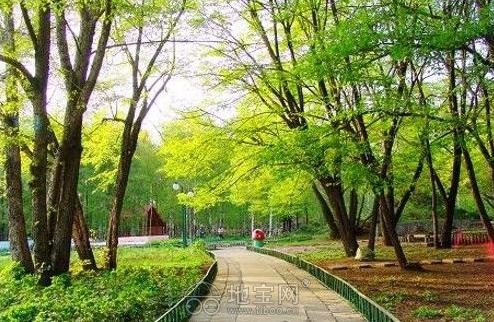 超高像素绿色风景图片